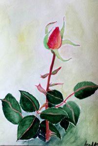 Rose/Роза-16.5x23.5 cm
